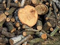 Heckenpflege und Holzwerbung