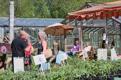Jungpflanzenmarkt